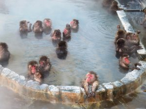 Yunokawa_hot_spring-4